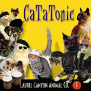 catatonic (album)