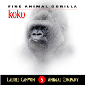 Even Gorillas Get the Blues | Music | Other