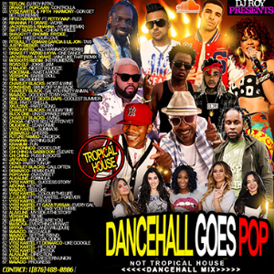 dj roy dancehall goes pop dancehall mix
