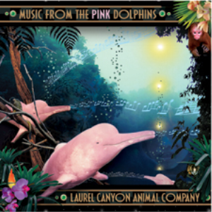 I Am The Pink Dolphin | Music | New Age