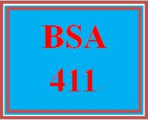 BSA 411 Week 4 Individual: User Interface   eBooks   Education