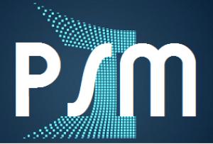 psm rm gap analysis tool