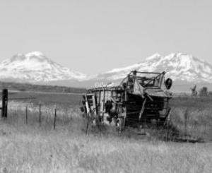 vintage farm equipment made of wood 748
