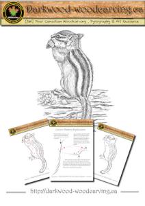 chipmunk 001 woodcarving pattern