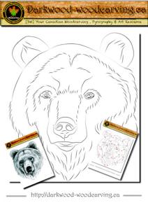 bear pattern 001