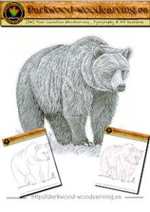 bear pattern 002
