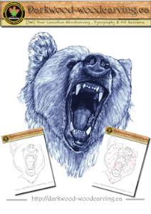 bear pattern 003