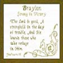 Name Blessings - Braylon | Crafting | Cross-Stitch | Religious