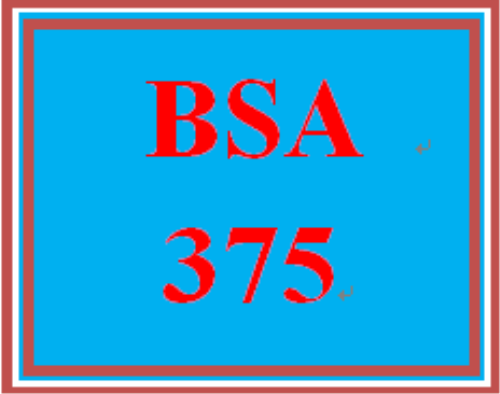 First Additional product image for - BSA 375 Week 2 Individual: Process Modeling