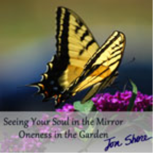 Seeing Your Soul in the Mirror | Audio Books | Meditation