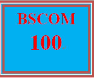 bscom 100 week 2 interview activity