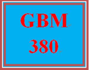 GBM 380 Week 4 Feasibility Study | eBooks | Education