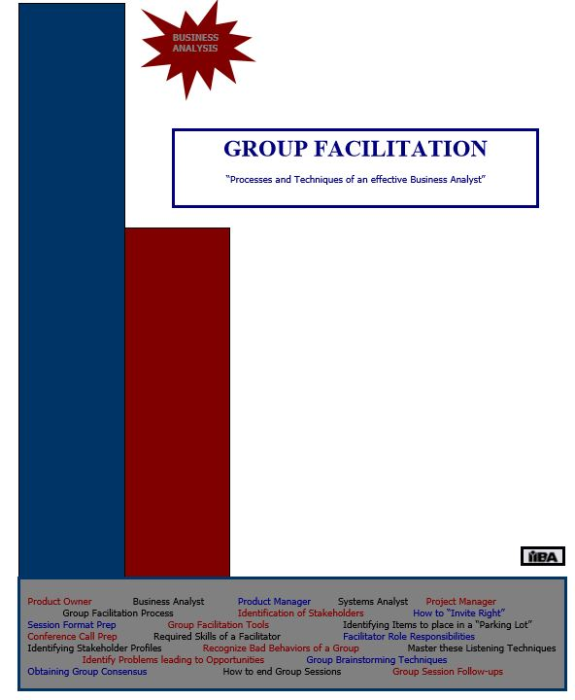 First Additional product image for - Group Facilitation - QRG