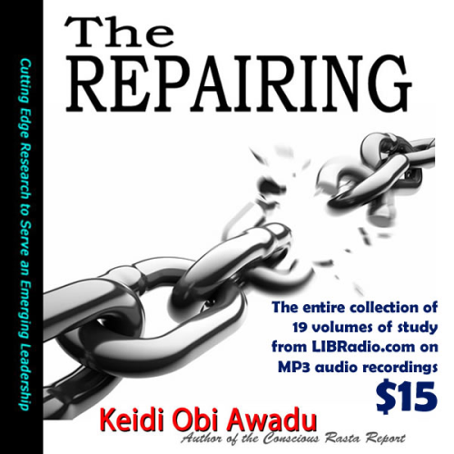 Third Additional product image for - The Repairing Book Study Vol's 1-19 on MP3
