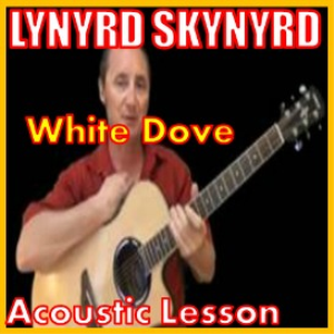 learn to play white dove by lynyrd skynyrd