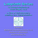 Labyrinth Series Guided Meditations - Volume 5 | Music | Other