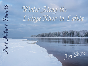 relax by the lielupe river in latvia in winter