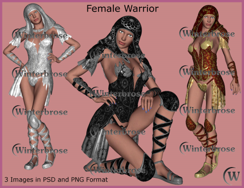 First Additional product image for - FEMALE WARRIOR Graphic Stock Images