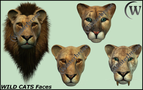 First Additional product image for - WILD CATS - Faces