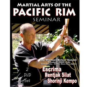 martial arts of the pacific rim seminar (2 dvd set)  by michael bilzer sensei - download
