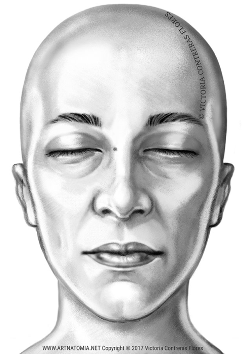 First Additional product image for - ARTNATOMYA Face Expressions Library (16 images)