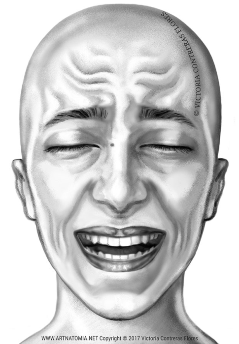 Second Additional product image for - ARTNATOMYA Face Expressions Library (44 images)