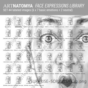 artnatomya face expressions library (44 images)