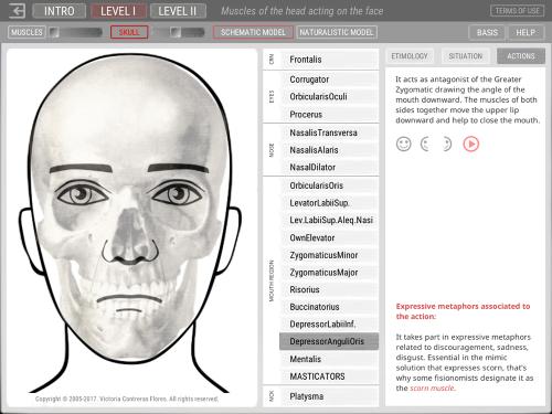First Additional product image for - ARTNATOMYA (English - Macintosh system)