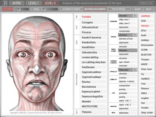 Second Additional product image for - ARTNATOMYA (English - Macintosh system)