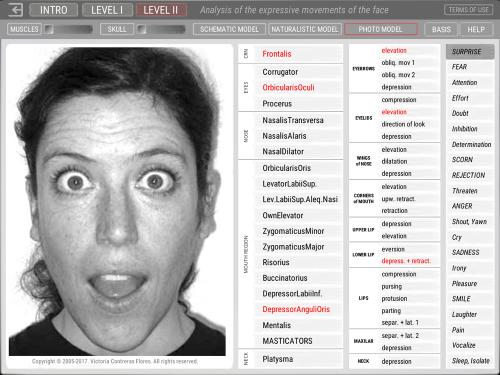 Third Additional product image for - ARTNATOMYA (English - Macintosh system)