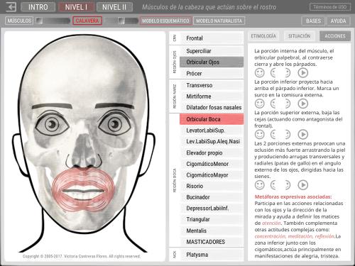 First Additional product image for - ARTNATOMYA (Español - Sistema Windows)
