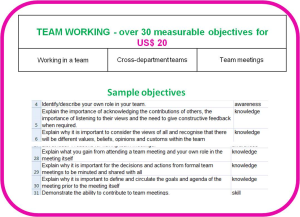 competence objectives - topic: teamwork