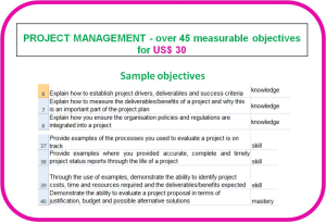 competence objectives - topic: project management