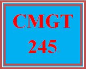 cmgt 245 week 1 individual defining risk