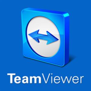 teamviewer 1 business license