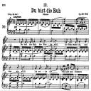 Du Bist die Ruh, D.776, Low Voice in B-Flat Major, F. Schubert | eBooks | Sheet Music