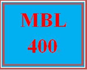 mbl 400 week 2 learning team: shopping app development