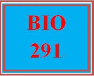 BIO 291 Week 3 WileyPLUS Worksheets | eBooks | Education