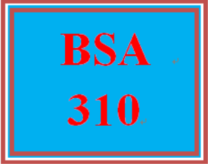 bsa 310 week 3 individual: balance sheet and income statement commentary