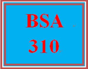 BSA 310 Week 5 Learning Team: Bubble Films | eBooks | Education