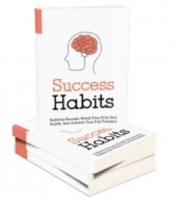 success habits 2017