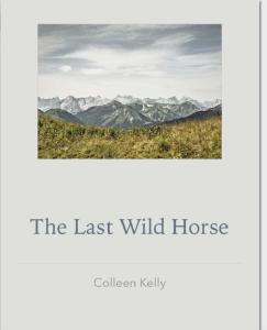 the last wild horse