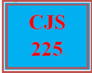 CJS 225 Week 5 Technology Presentation   eBooks   Education