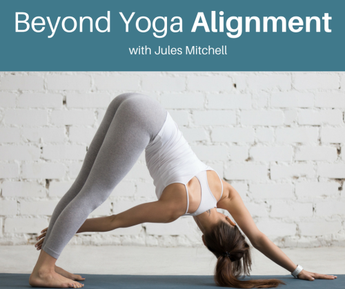 First Additional product image for - Beyond Yoga Alignment: Biomechanics, Posture, and Performance