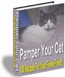 pampeyour cat