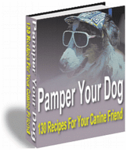 pamper your dog
