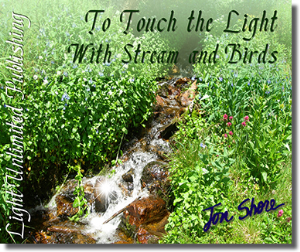 to touch the light with stream and birds side 2
