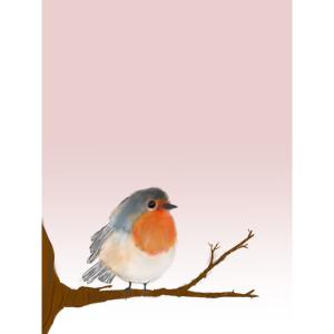 morning bird robin on a branch