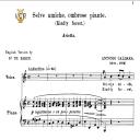 Selve amiche, Medium Voice in A Minor, A.Caldara. For Soprano, High Soprano, Tenor, Lyric Baritone. Tablet Sheet Music. A5 (Landscape). Schirmer (1894) | eBooks | Sheet Music