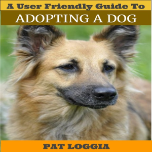 a user friendly guide to adopting a dog